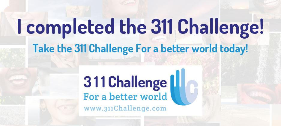 311 Challenge